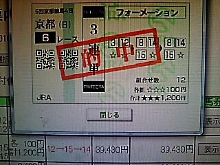 2016-1113-192901183.JPG