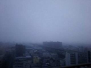 2018-02-04T10:41:35.JPG